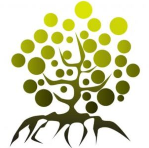cropped-cropped-philo-logo-arbre.jpg