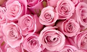 philo-fond-2014-rose-rose2.jpg